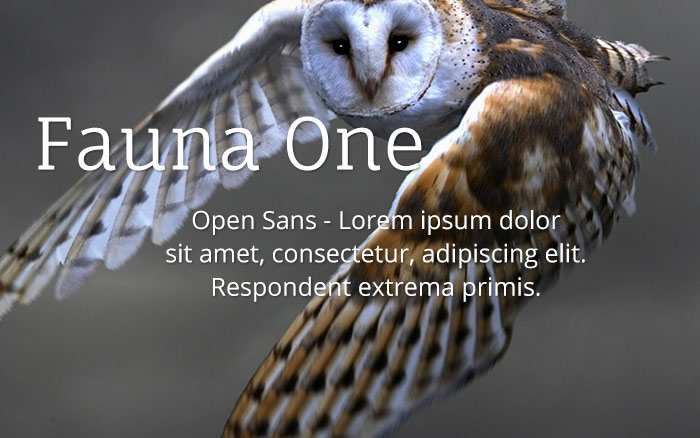 fauna-one-open-sans