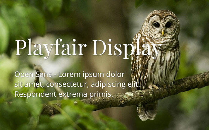 playfair-display-open-sans